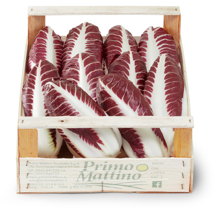 Long radicchio - Wooden box