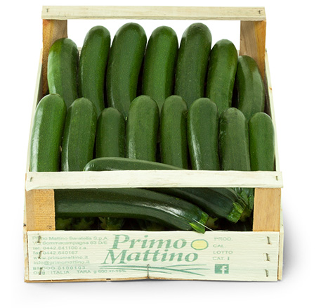 Long courgettes - Wooden box